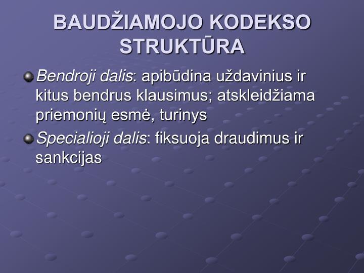 BAUDŽIAMOJO KODEKSO STRUKTŪRA
