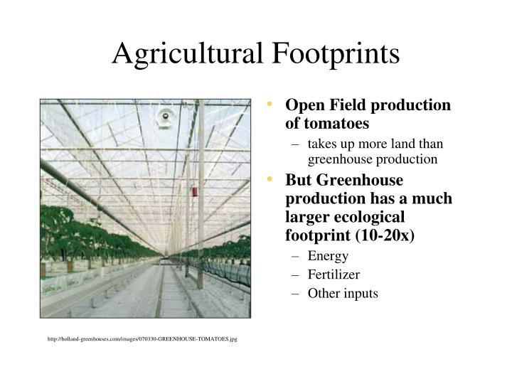 Agricultural Footprints