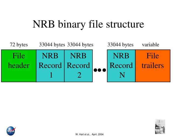 nrb binary file structure n.