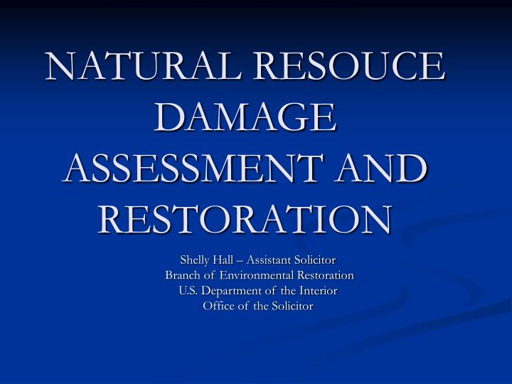 natural resouce damage assessment and restoration n.