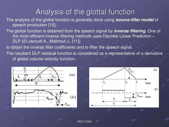 Analysis of the glottal function