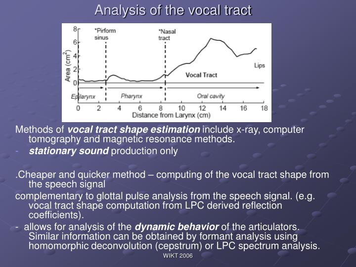 Analysis of the vocal tract