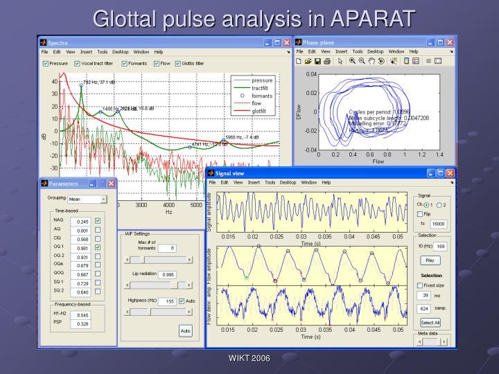 Glottal pulse analysis