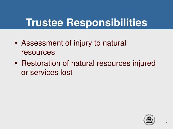 Trustee Responsibilities