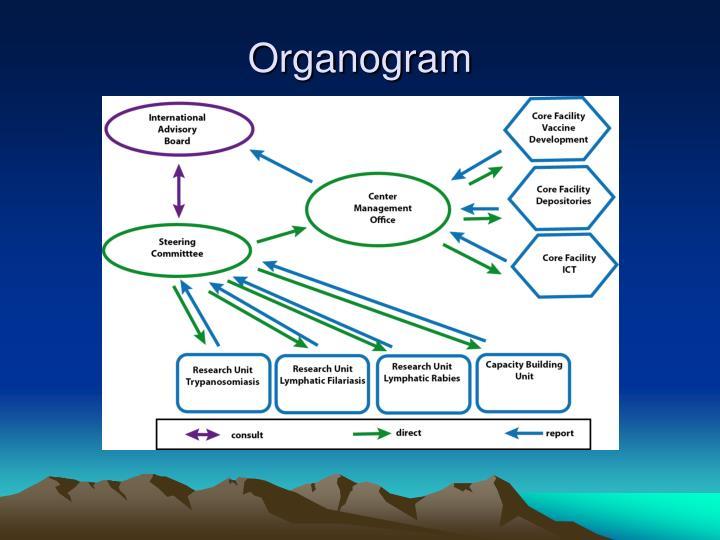 Organogra