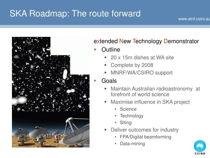 SKA Roadmap: The route forward
