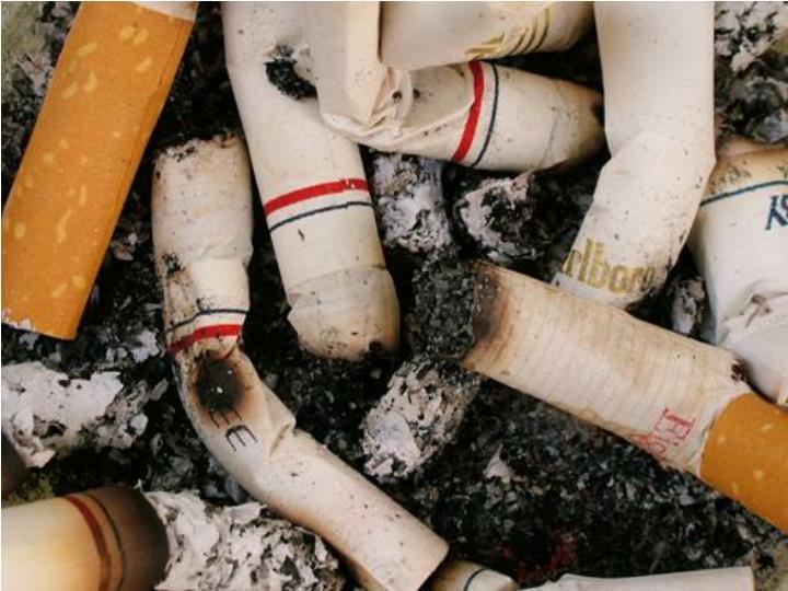 Rea program tica norte secretar a de salud programa provincial de control de tabaco