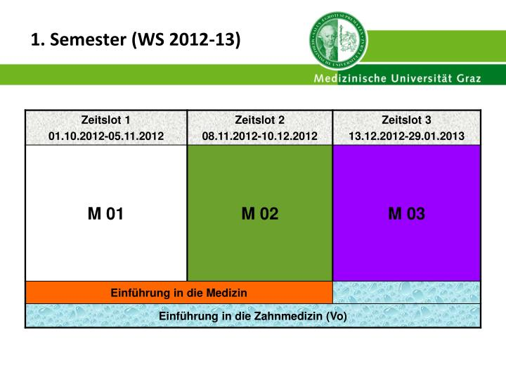 1 semester ws 2012 13
