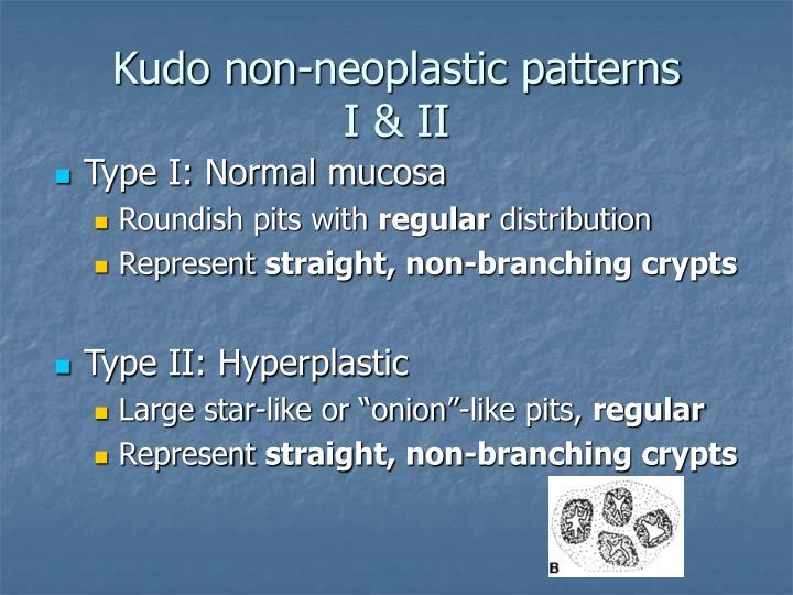 Kudo non-neoplastic patterns