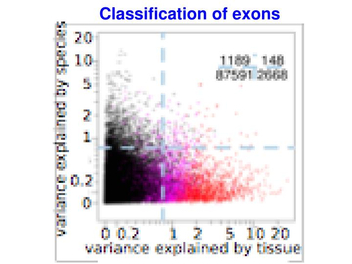 Classification of exons