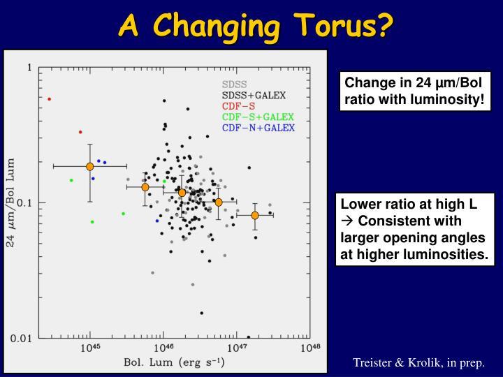 A Changing Torus?