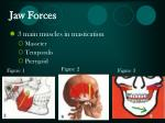 jaw forces