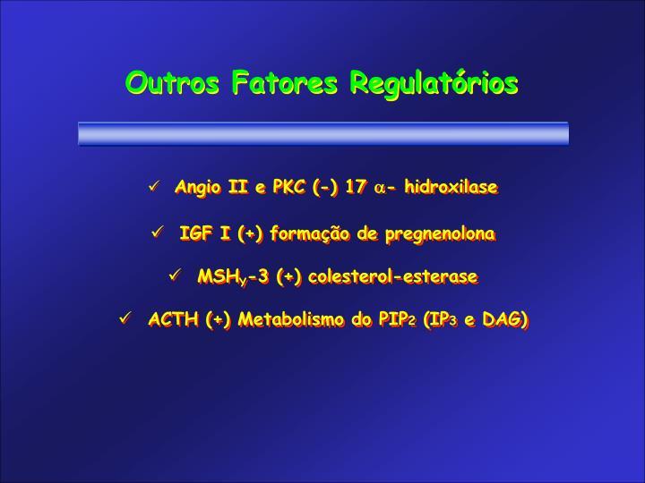 Outros Fatores Regulatórios