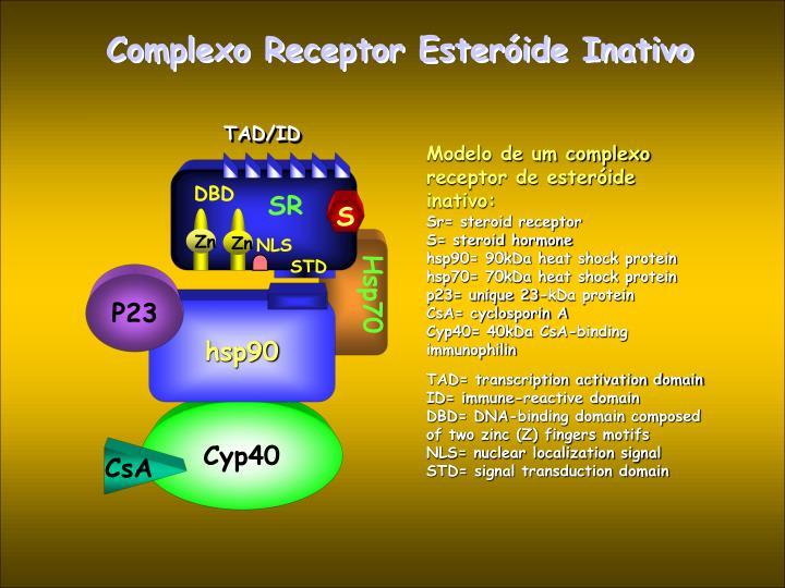 Complexo Receptor Esteróide Inativo