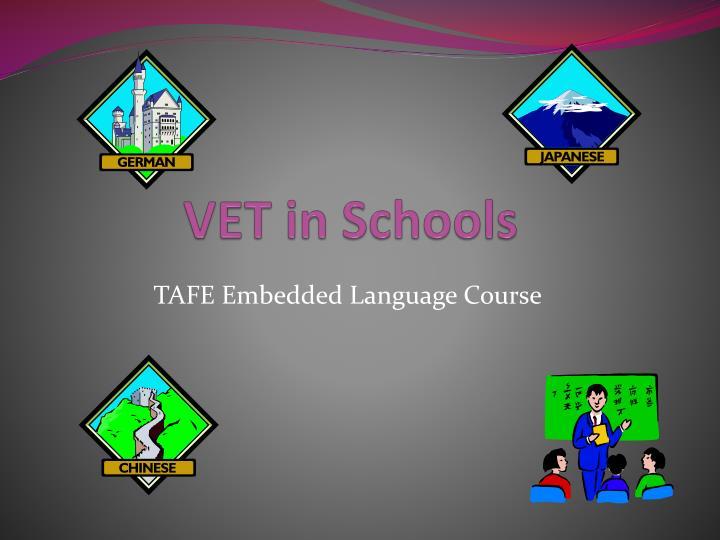 vet in schools n.