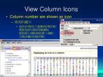 view column icons