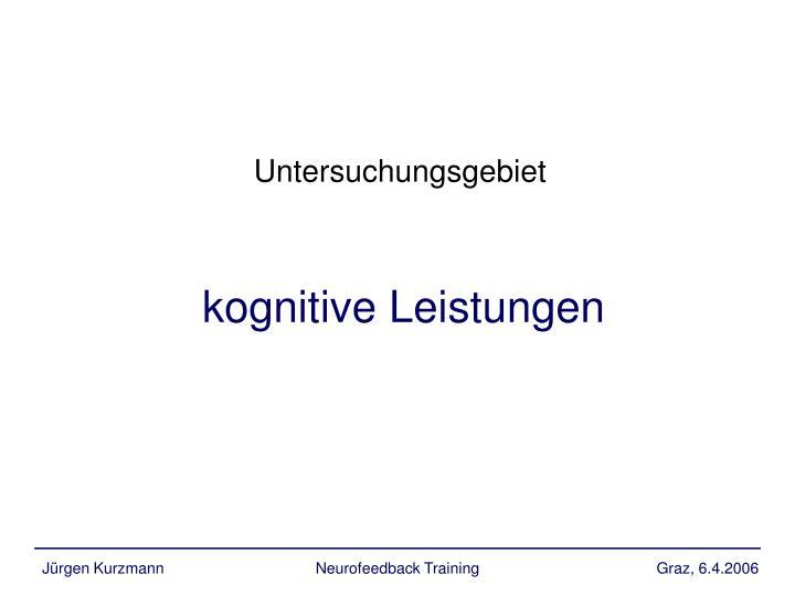 kognitive Leistungen