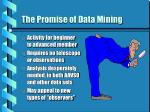 the promise of data mining