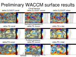 preliminary waccm surface results