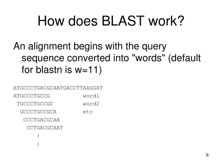 How does BLAST work?