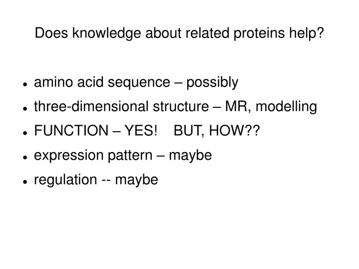 Does knowledge about related proteins help?