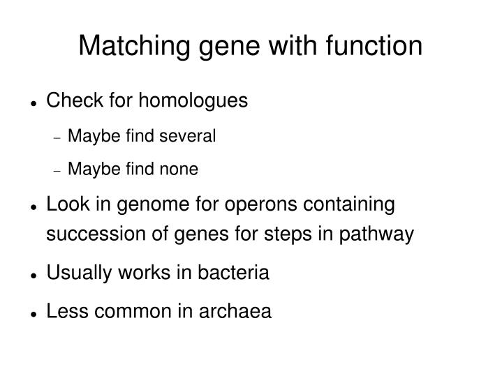 Matching gene with function