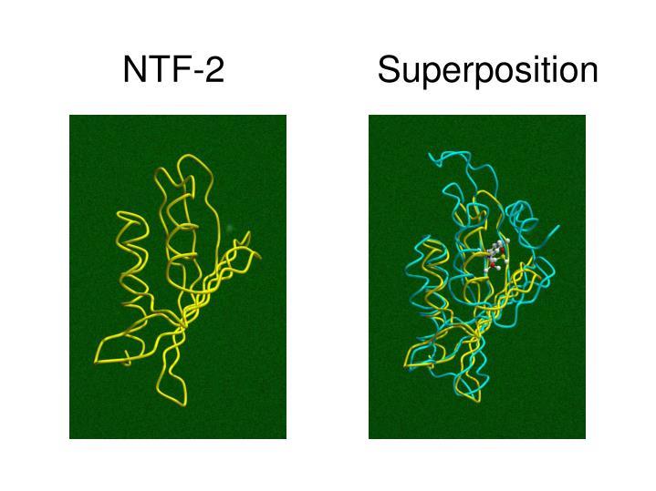 NTF-2               Superposition