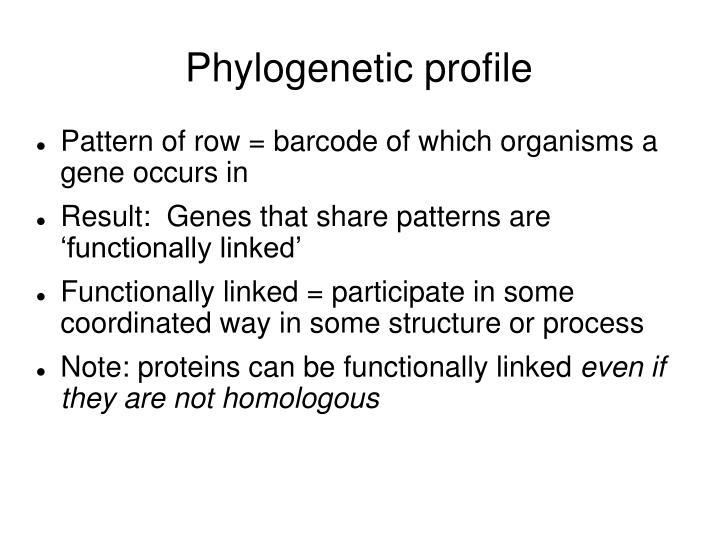 Phylogenetic profile