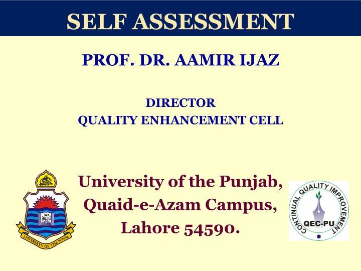 self assessment n.