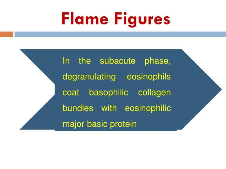 Flame Figures