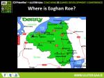 where is eoghan roe