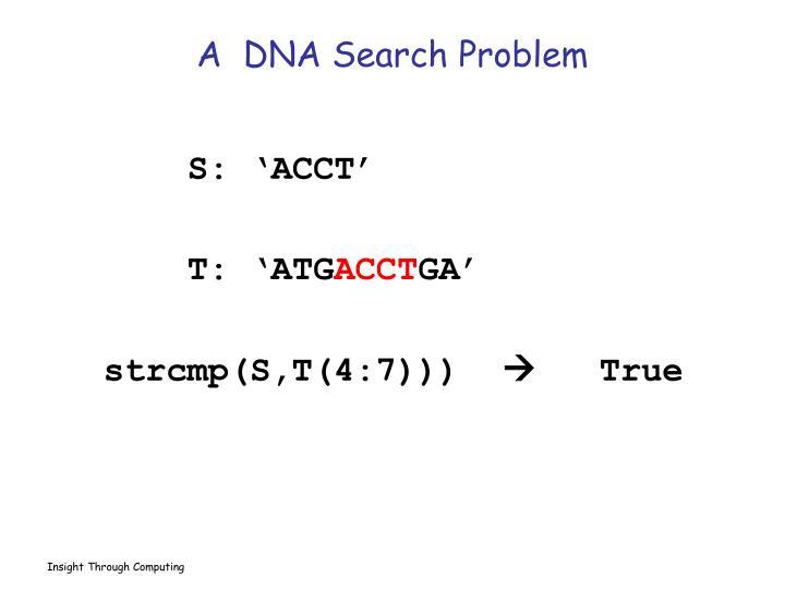 A  DNA Search Problem