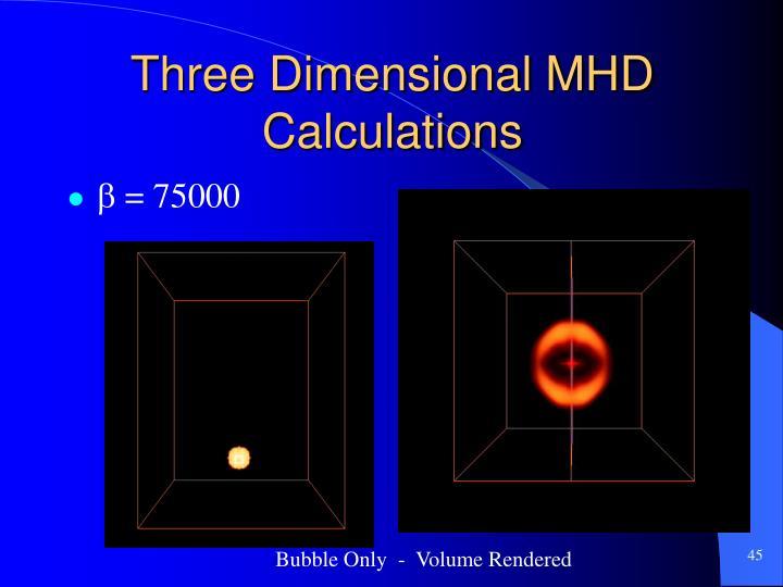 Three Dimensional MHD Calculations