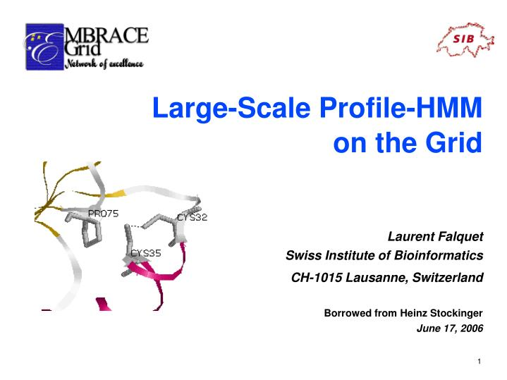 Large-Scale Profile-HMM