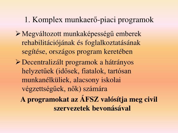 1. Komplex munkaerő-piaci programok