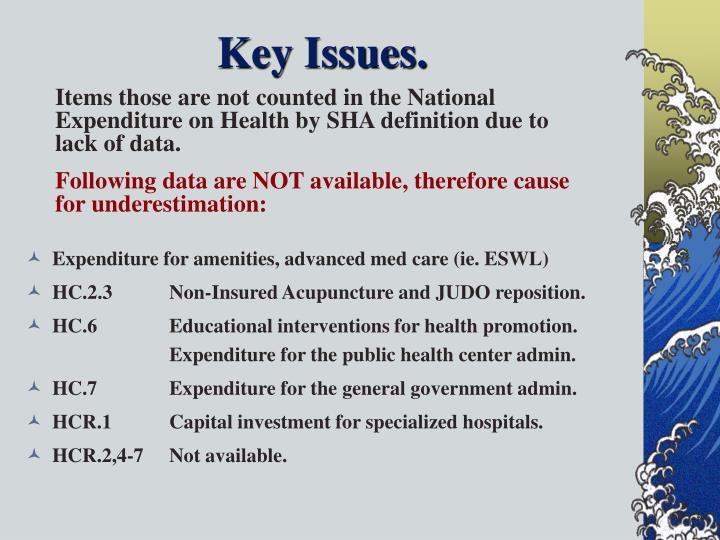 Key Issues.