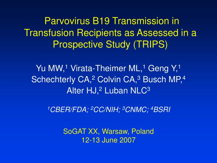 parvovirus b19 transmission in transfusion recipients as assessed in a prospective study trips