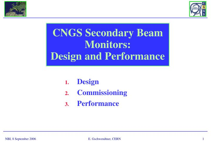 Cngs secondary beam monitors design and performance