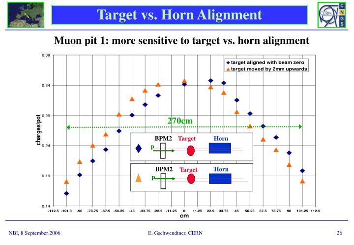 Target vs. Horn Alignment