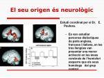 el seu origen s neurol gic