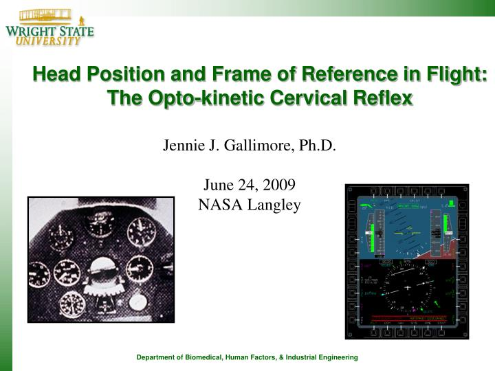 Head position and frame of reference in flight the opto kinetic cervical reflex