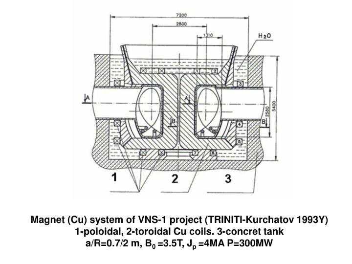 Magnet (Cu) system of VNS-1 project (TRINITI-Kurchatov 1993Y)