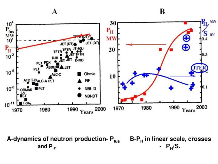 A-dynamics of neutron production- P