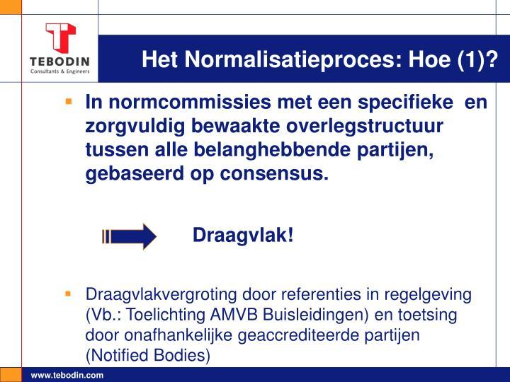 Het Normalisatieproces: Hoe (1)?
