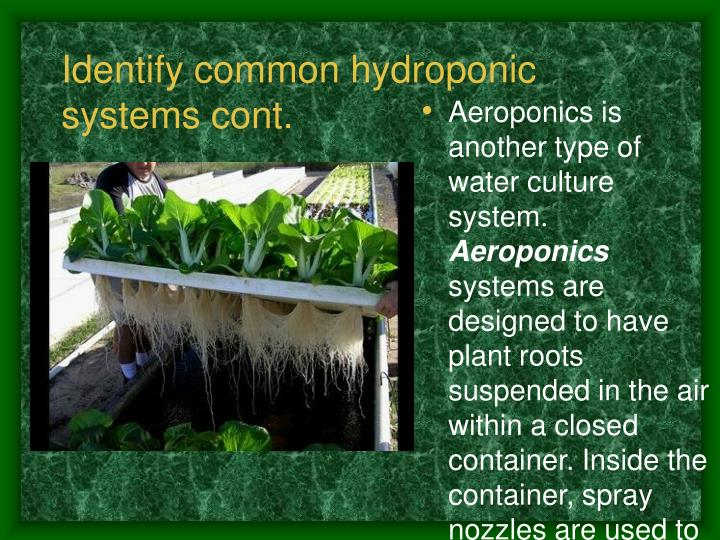 Identify common hydroponic systems cont.