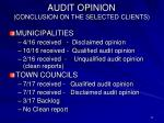 audit opinion conclusion on the selected clients