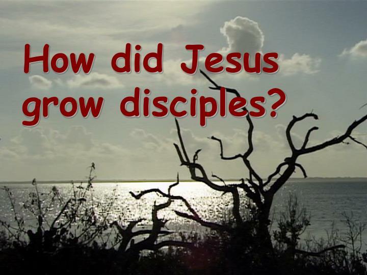 How did jesus grow disciples