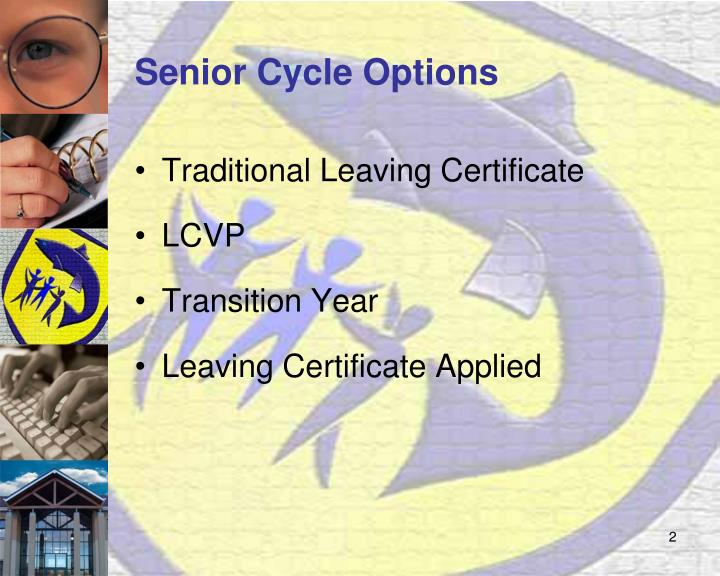 Senior cycle options