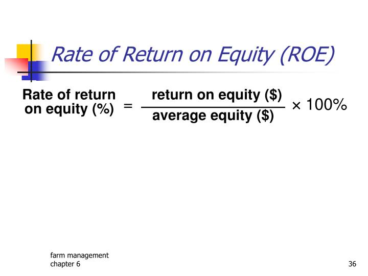 Rate of Return on Equity (ROE)