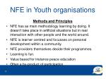 nfe in youth organisations